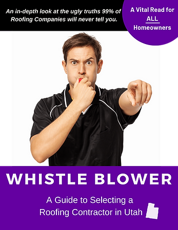 Whistle Blower - A Guide to Selecting a