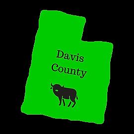 Davis County Utah Roofing