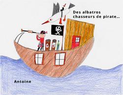 Dessin_breve_Albatros-2