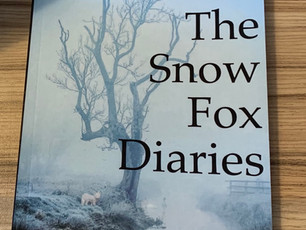 Blog Tour: The Snow Fox Diaries by Jan Mazzoni