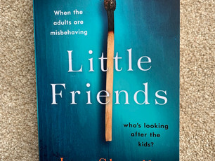 Blog Tour: Little Friends by Jane Shemilt