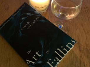 Review: The Art of Falling by Danielle McLaughlin
