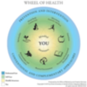 Copy of wheel of health.jpg