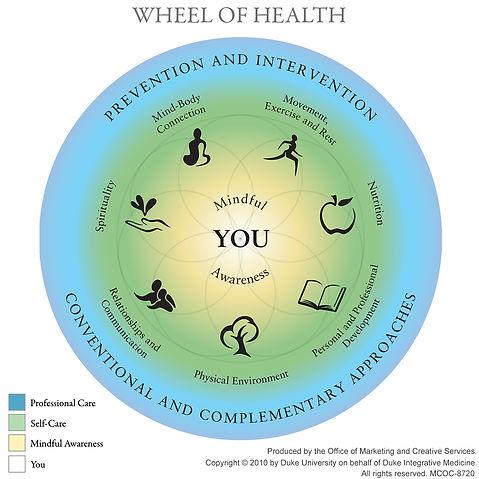 Copy of wheel of health.jpg