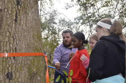 Teaching Tree-Ring Science to K-12 Students