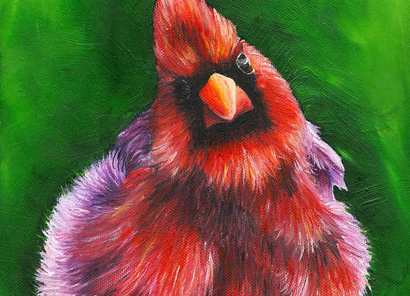 "8""X8"" Original Cardinal Oil Painting"