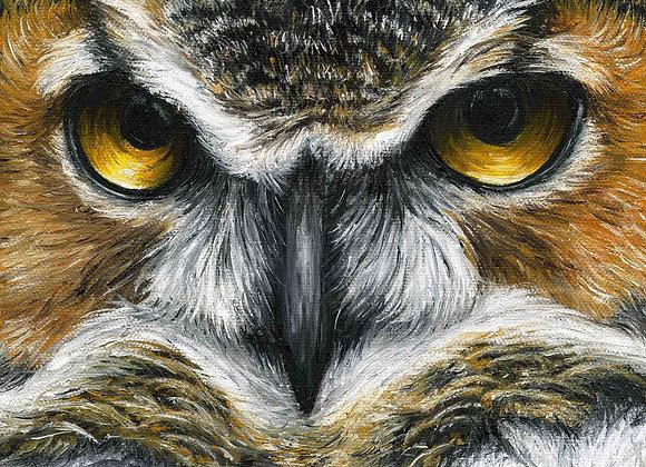 "8""X8"" Original Owl Oil Painting"