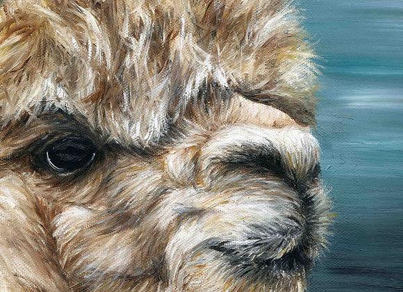 "8""X8"" Original Alpaca Oil Painting"