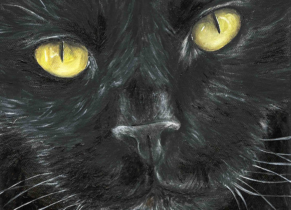 "8""x8"" Cat Giclee Print"