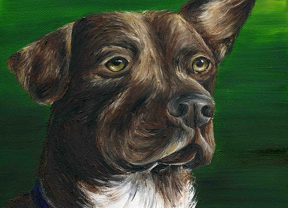 "8""x8"" Dog Giclee Print"