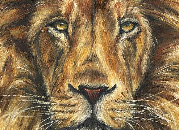 "8""x8"" Lion Giclee Print"