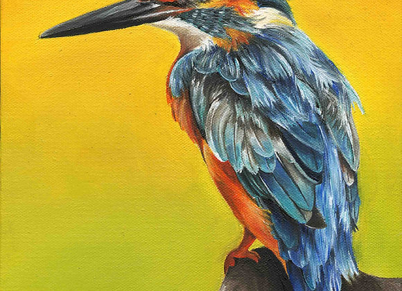 "8""X8"" Original King Fisher Bird Oil Painting"