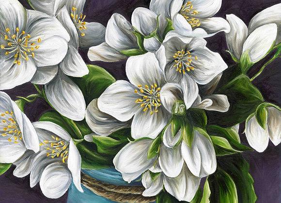 "20""X20"" Original Jasmine Flowers Oil Painting"