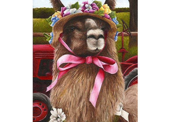 """4.25"""" x 5.5"""" Llama Greeting Card with Envelope (Conswala))"""