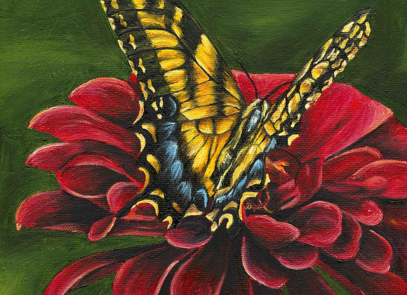 "8""x8"" Butterfly Giclee Print"