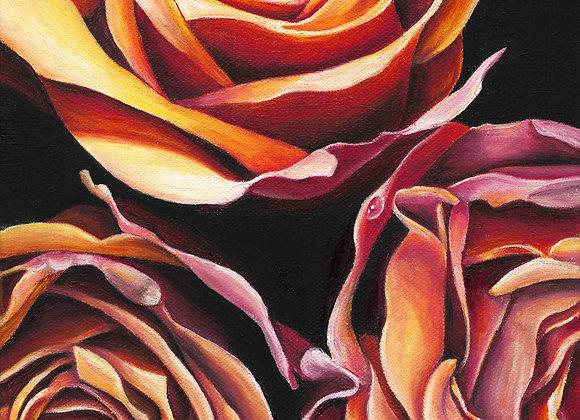 "8""x8"" Roses Giclee Print"