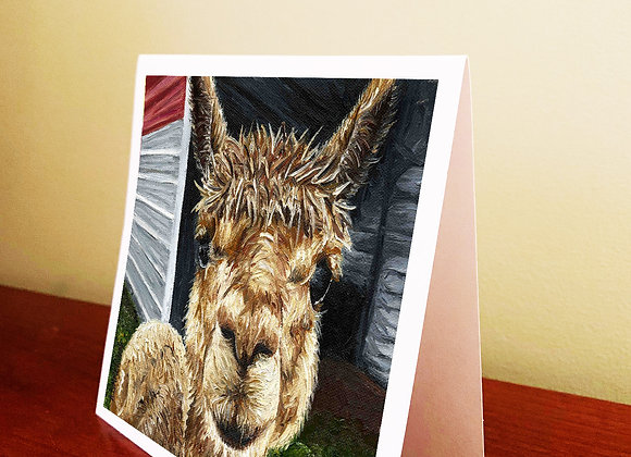 "5.5"" x 5.5"" Alpaca Greeting Card With Envelope"