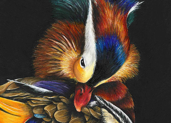 "8""X8"" Original Mandarin Duck Oil Painting"