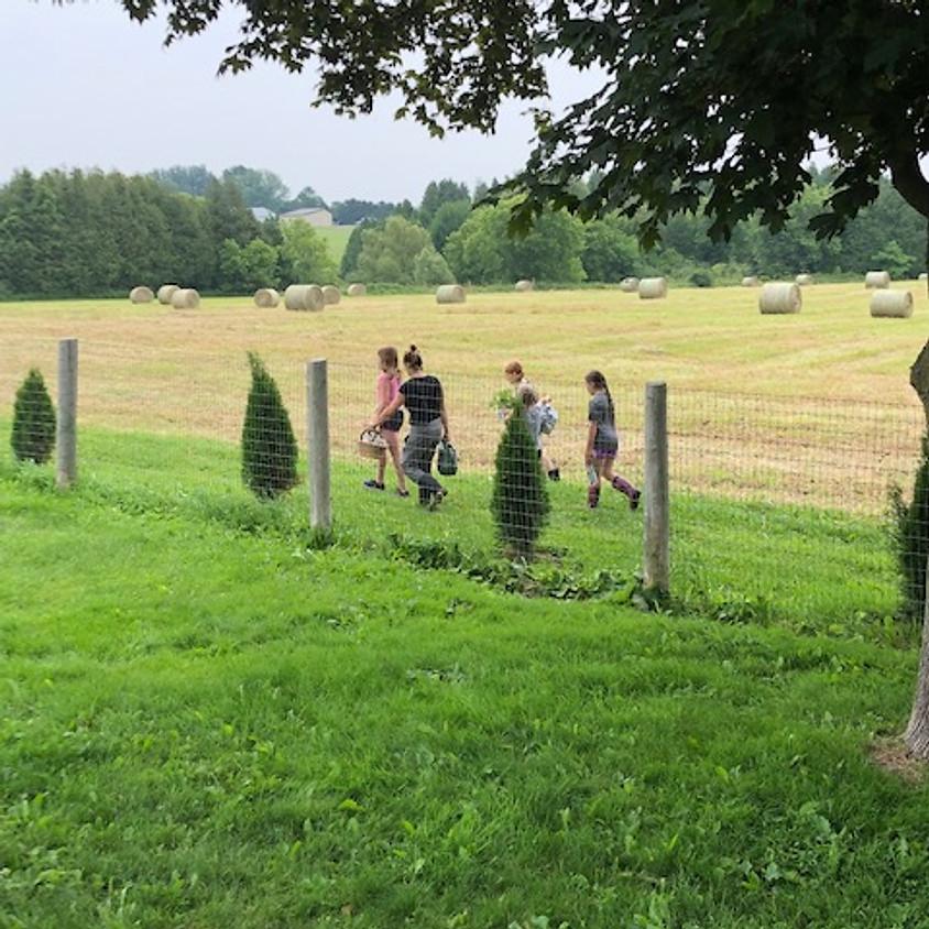 Kids Farm Camp (5 Days)