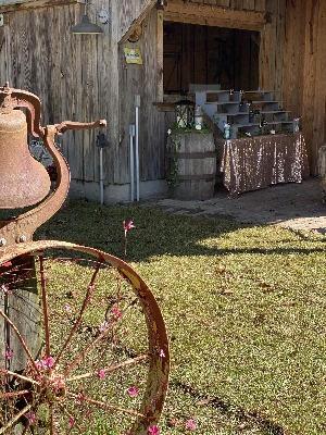 Wagon Wheel Wedding Decorations