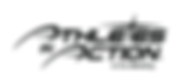 AIA-Logo_Cru-endorsed_Black.png