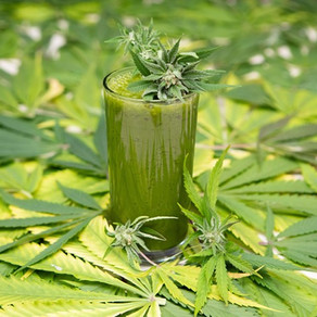 CBD BEVERAGES: WHAT'S THE LATEST TREND?
