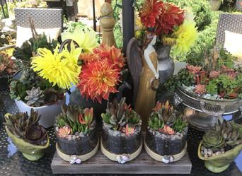 Beautiful Blooms NIGC - May 15, 2020