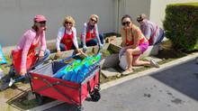 Gardening At Naples Bayside Elementary School