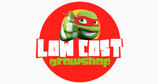 LOW COST - RESTYLING DISSENY LOGOTIP 2019