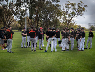 Spring Training Photos WK2