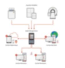 evoviewdiagram-01.jpg