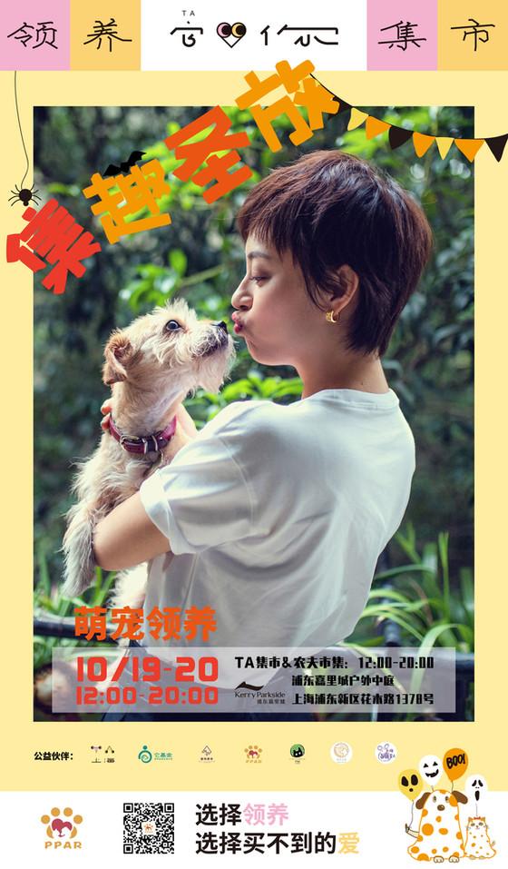 Pet Adoption & Bazaar