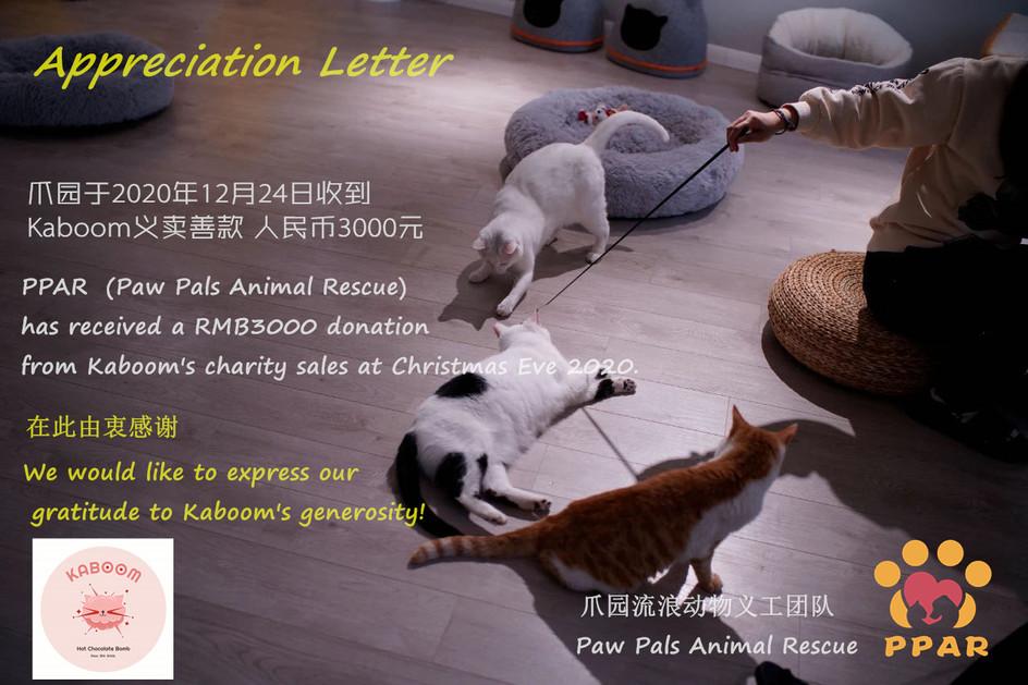 感谢Kaboom在圣诞夜给爪园猫咪带来了礼物 / Huge thanks to Kaboom for its generous donation to the PPAR Shelter!