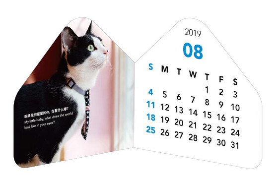 Early Purchase of the 2019 PPAR Calendar! Special Edition PPAR × Little Fluffy!