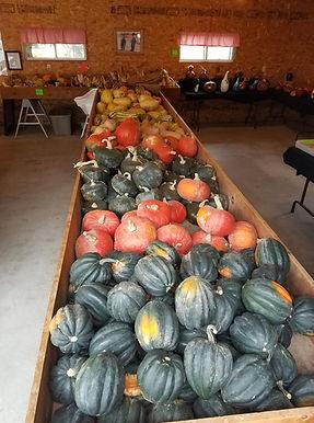 Gourds, squash, pumpkin patch, Edgerton WI, pumpkin farm, pumpkins, fall activities