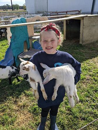 Hermanson Pumpkin Patch, baby goats, Edgerton Wisconsin, pumpkin patch, fall activities, fall fun, family activies, fall activities