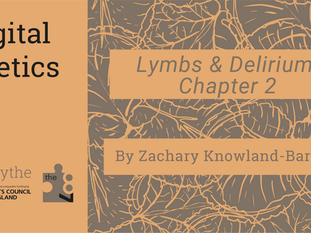 Digital Poetics #27 Lymbs and Delirium: Chapter 2 by Zachary Knowland-Barker