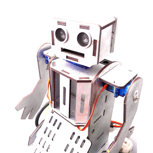 Robot TORIAN