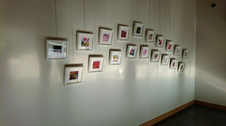The individual prints, framed and hung i