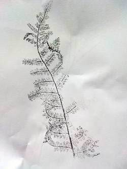 Live plant print