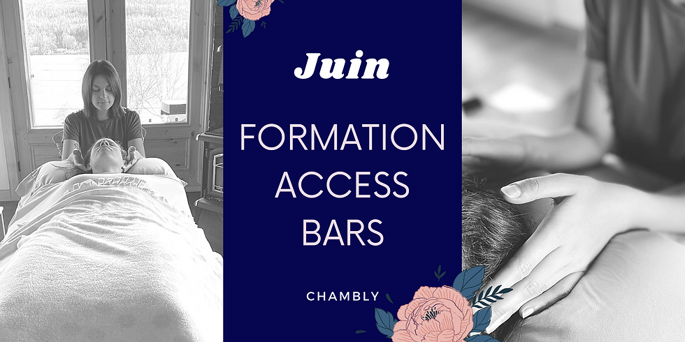 Formation certifiante Access Bars