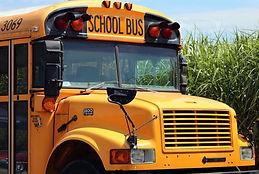 school-bus-4406479.jpg
