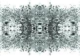 kaledoscopie Series RG artwork.JPG