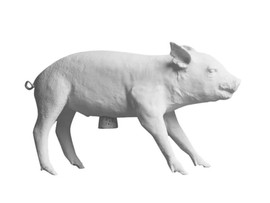 Reality Bank in the Form of a Pig Piggy
