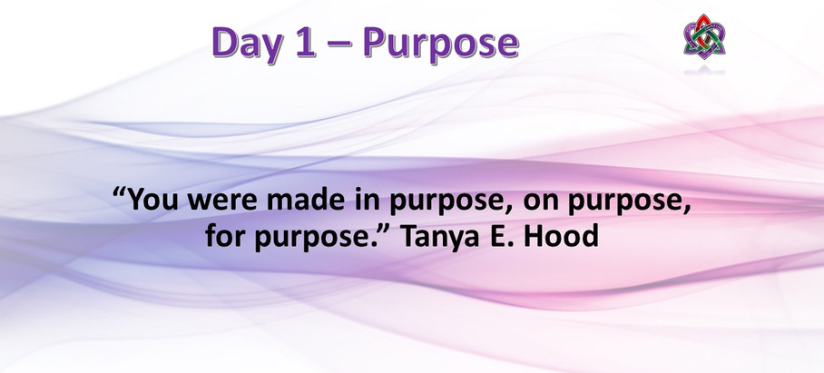 Day 1 - Purpose