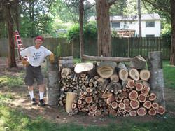 David tree job may2015