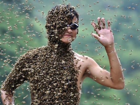 ΔΕΙΤΕ VIDEO Κλειδωμένοι στο ασανσέρ με αγριεμένες μέλισσες