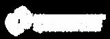 Εξειδικευμένος συνεργάτης kleemann ανελκυστηρες ασανσερ κλεμαν kleemann