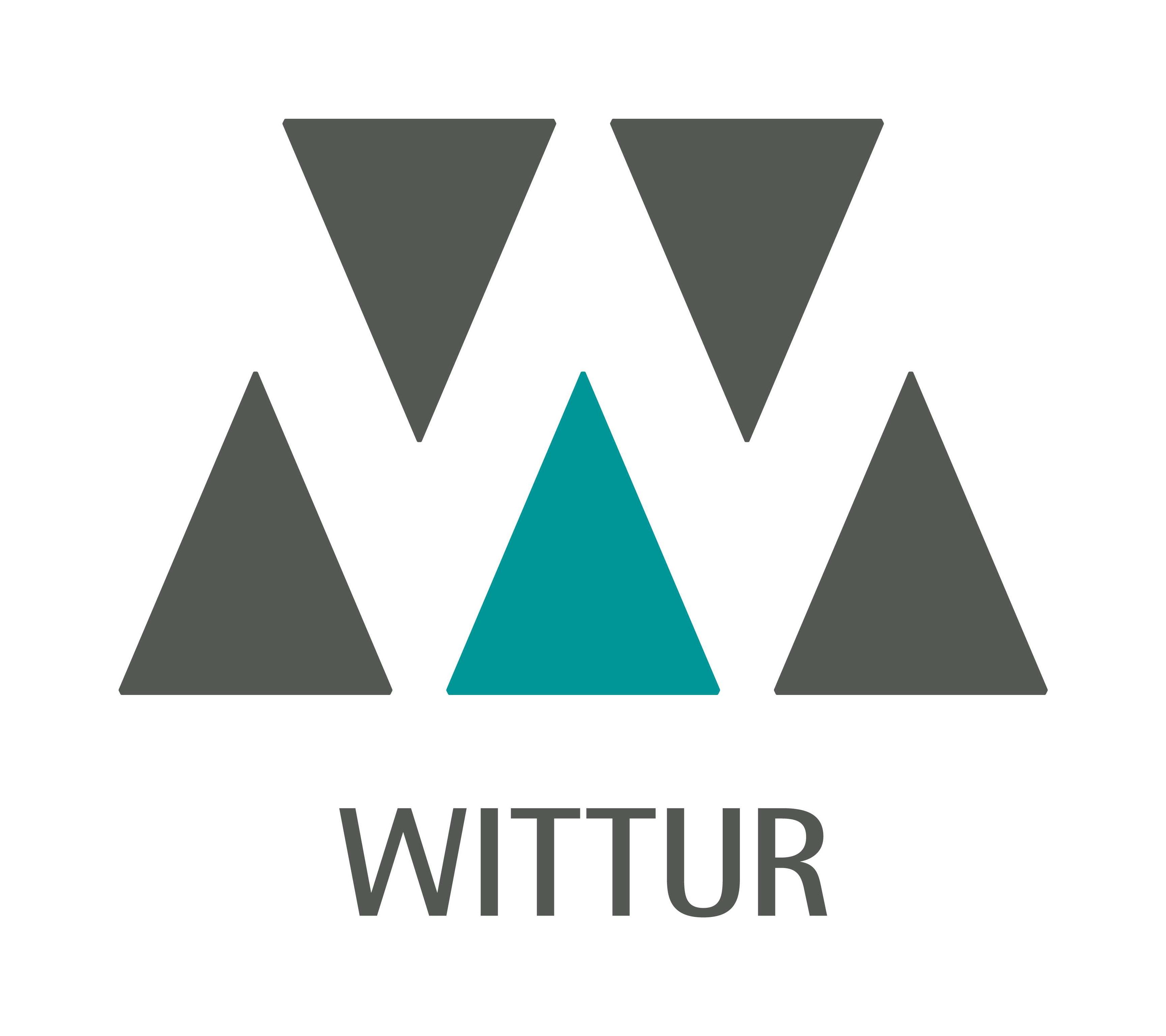 Wittur ανελκυστηρες