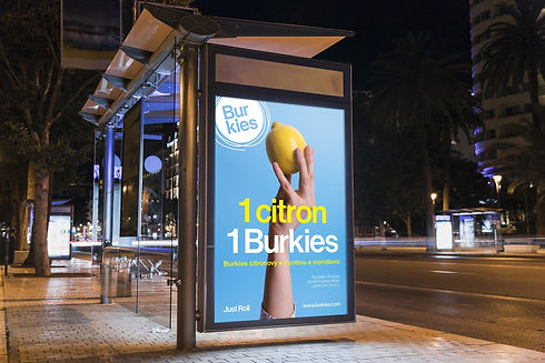 Burkies 002.jpg